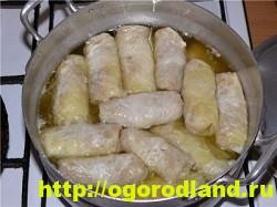 Голубцы. Рецепт голубцов с картошкой под грибным соусом 10