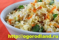 Блюда из крапивы. Три рецепта приготовления на даче 6