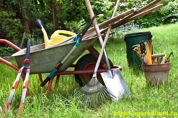 Садовый инвентарь. Инструменты для дачи 3