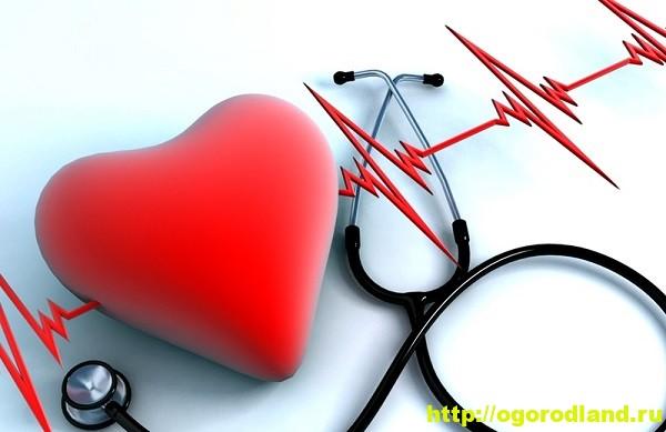 Сердечно—сосудистые заболевания. Меню для сердца 1