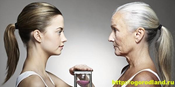 Как замедлить старение? Молодильная пища