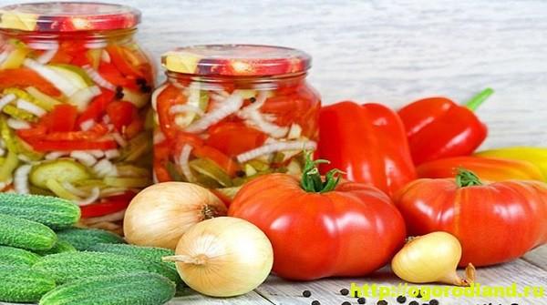 Салаты на зиму. Пять вкусных салатов из овощей на зиму