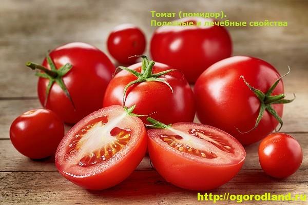 Томат (помидор). Полезные и лечебные свойства 13