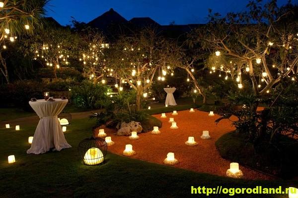 Ландшафтный дизайн сада. Как необычно украсить сад 1