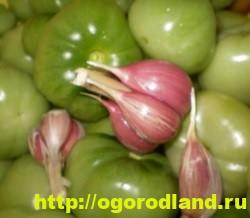 Салаты из зелёных помидоров. Рецепты на зиму 6