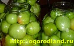 Зеленые помидоры на зиму. Рецепты консервирования 9