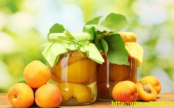 Компоты из абрикосов на зиму