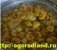 Варенье из абрикосов. Сладкие заготовки на зиму. Рецепты 5