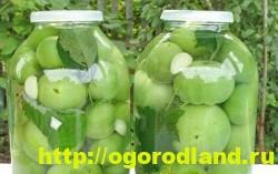 Зеленые помидоры на зиму. Рецепты консервирования