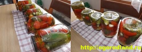 Ассорти - помидоры и огурцы на зиму. Пошаговый рецепт с фото