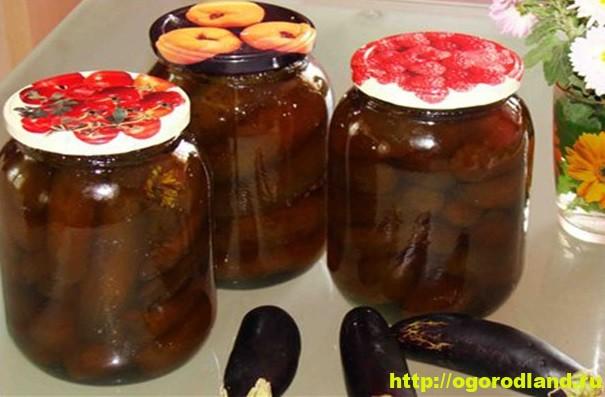 Рецепты из баклажанов на зиму. Консервирование баклажанов