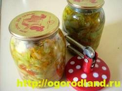 Салаты из зелёных помидоров. Рецепты на зиму 7