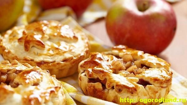 Домашняя кулинария. Пять рецептов вкусной выпечки с яблоками 1