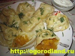 Блюда из тыквы. Подборка рецептов вторых блюд с тыквой 7