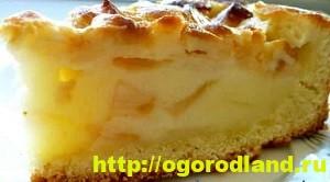 Домашняя кулинария. Пять рецептов вкусной выпечки с яблоками 3