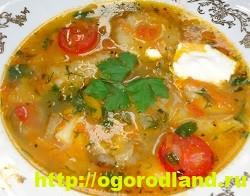Первые блюда. Суп из баклажанов. Пять вкусных супчиков