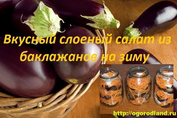 Баклажаны на зиму. Слоеный салат из баклажанов с морковью