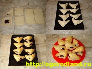 Домашняя кулинария. Рецепты выпечки со сливой 9
