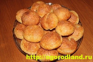 Домашняя кулинария. Пять рецептов вкусной выпечки с яблоками 5