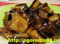 Вкусные блюда из баклажанов. 11 вкуснейших рецептов вторых блюд 9