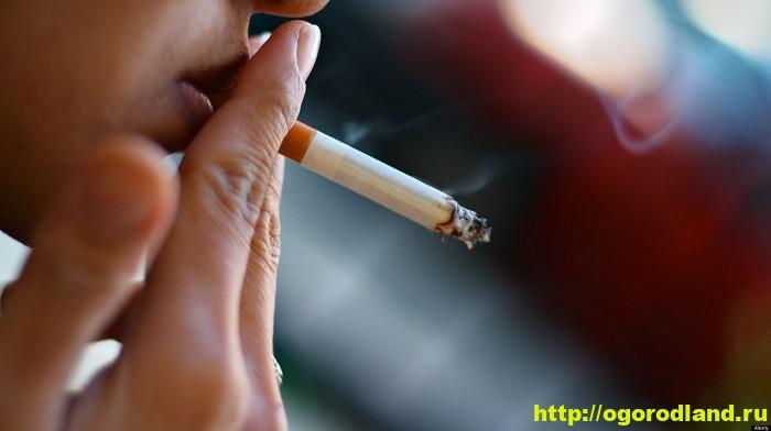 Кашель курильщика симптомы и лечение