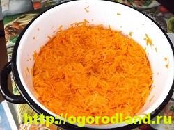 Морковь на зиму по-корейски. Пошаговый рецепт с фото 4