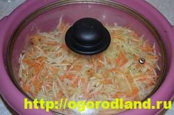 Кабачки по-корейски. Вкусный и быстрый рецепт приготовления