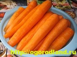Морковь на зиму по-корейски. Пошаговый рецепт с фото 2