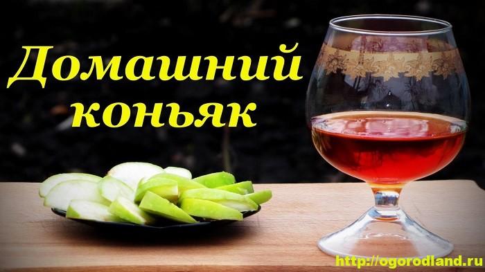 Рецепт домашнего коньяка
