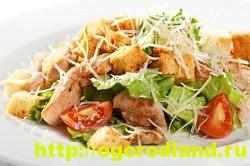 Салаты с курицей. Рецепты вкусных салатов на праздник 14