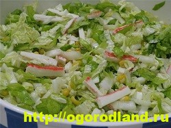 Салаты с крабовыми палочками. Рецепты праздничных салатов 6