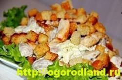 Салаты с курицей. Рецепты вкусных салатов на праздник 13