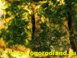 Вкусные блюда из рыбы. Рецепты приготовления толстолобика 11