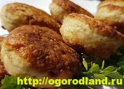Вкусные блюда из рыбы. Рецепты приготовления толстолобика 7