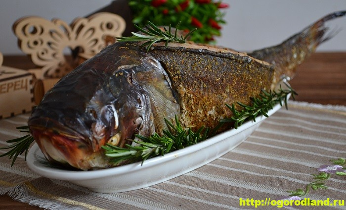 Вкусные блюда из рыбы. Рецепты приготовления толстолобика 1