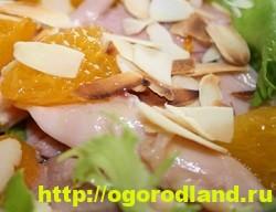 Готовим салаты с курицей. Подборка рецептов вкусных салатов 17