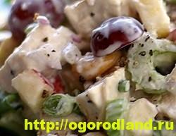 Готовим салаты с курицей. Подборка рецептов вкусных салатов 16