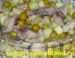Салаты с селедкой. Удачные рецепты на праздничный стол 4