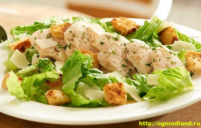 Готовим салаты с курицей. Подборка рецептов вкусных салатов 1