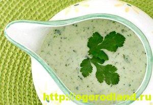 Соусы. Рецепты приготовления соусов для мясных и рыбных блюд 12
