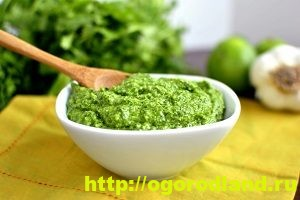 Соусы. Рецепты приготовления соусов для мясных и рыбных блюд 9