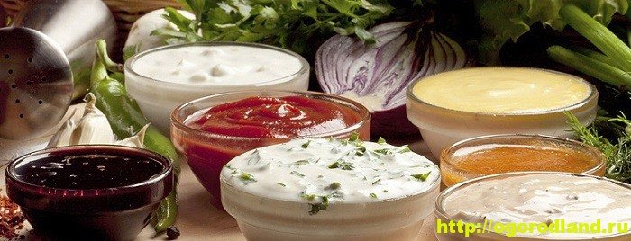 Соусы. Рецепты приготовления соусов для мясных и рыбных блюд 1