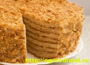 Рецепты тортов. Домашние тортики своими руками 9