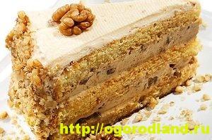 Рецепты тортов. Домашние тортики своими руками 8