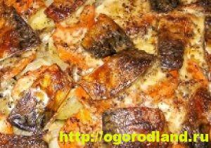 Блюда из скумбрии. Рецепты приготовления скумбрии
