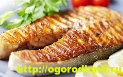 Вкусные блюда из рыбы. Рецепты приготовления толстолобика 4