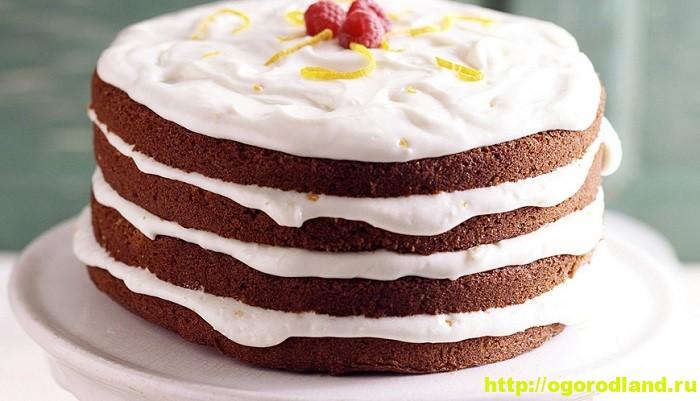 Домашние торты. Шесть рецептов вкусных тортов 3