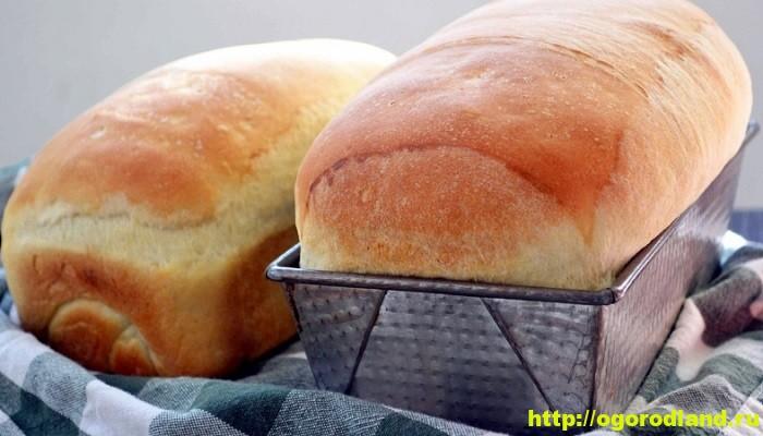 Домашний хлеб. Рецепт выпечки хлеба и его различные варианты 1
