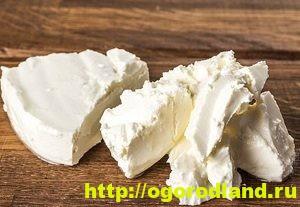 Как приготовить домашний сыр. 12 рецептов сыров по-домашнему 6