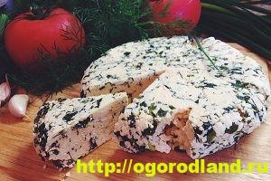 Как приготовить домашний сыр. 12 рецептов сыров по-домашнему 5
